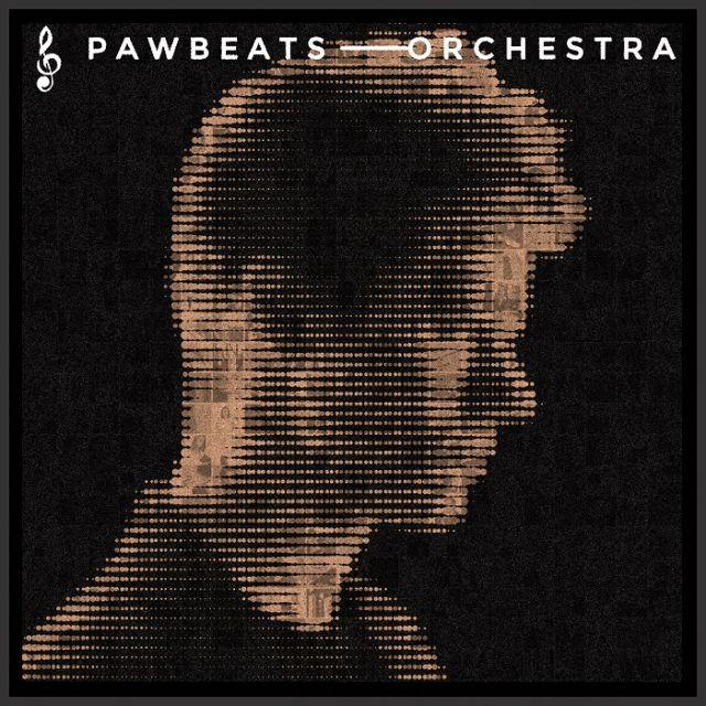 PŁYTA CD PAWBEATS ORCHESTRA